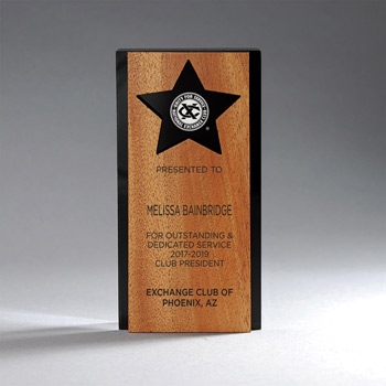Ebony Lucite with Mahogany Panel with Star Award